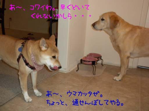 053109_KentaBlockingMomo.jpg