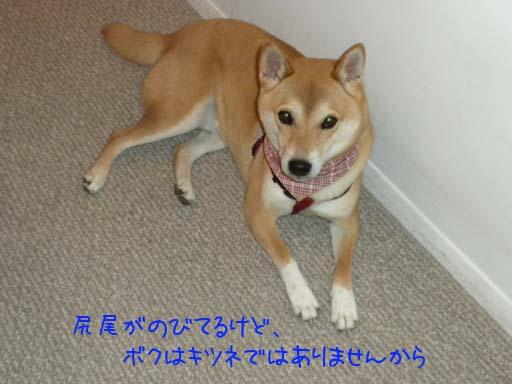 052909_Kenta.jpg